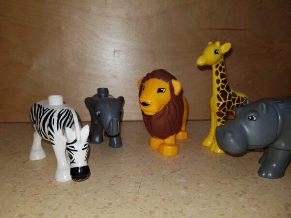 Kunstcircuit: 'Op Safari'